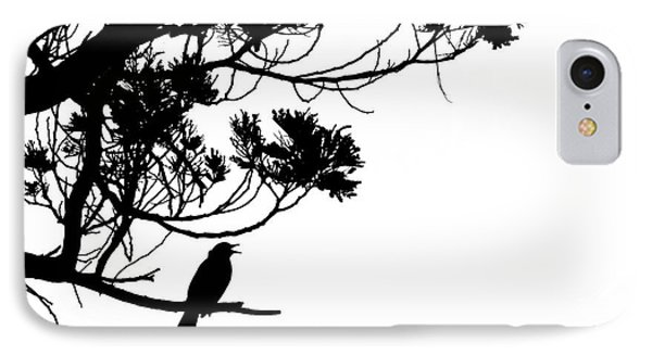 Silhouette Of Singing Common Blackbird In A Tree IPhone Case by Stephan Pietzko