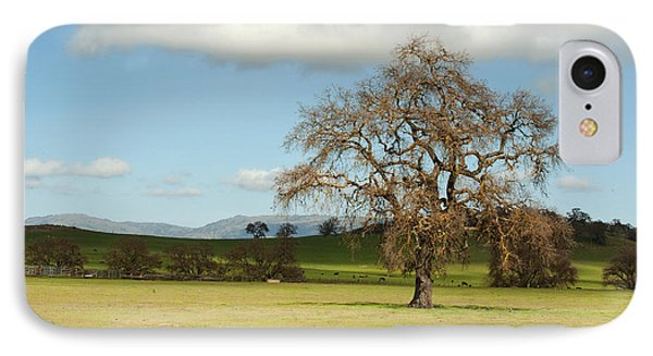 Silicon Valley Hills Phone Case by Artist and Photographer Laura Wrede