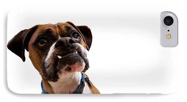 Silly Boxer Dog IPhone Case by Stephanie McDowell