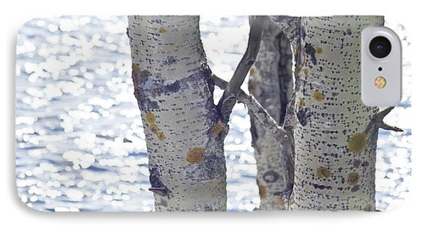 Silver Birch Trees At A Sunny Lake IPhone Case by Heiko Koehrer-Wagner