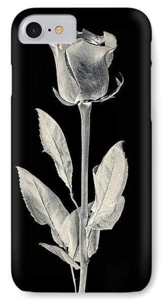 Silver Rose IPhone Case by Adam Romanowicz