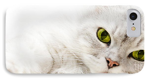 Silver Shaded Persian IPhone Case