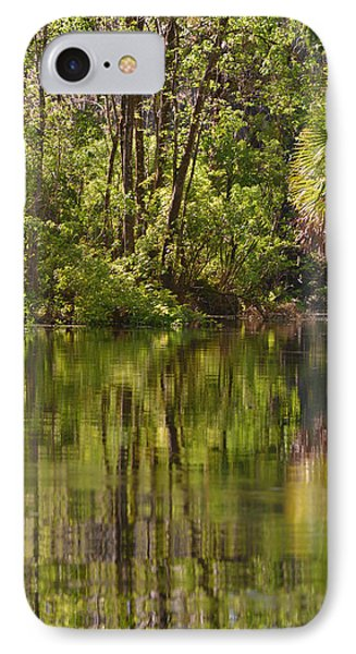 Silver Springs Nature Park Florida Phone Case by Christine Till