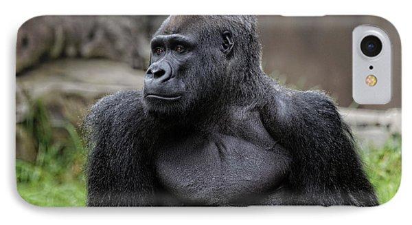 Silverback Gorilla Phone Case by Scott Hill