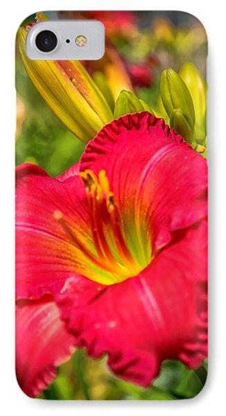 Simple Lily IPhone Case by James  Meyer