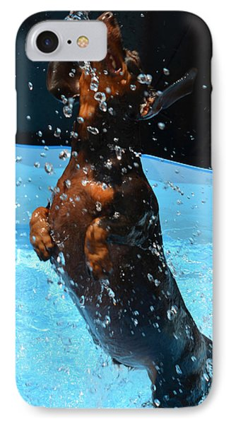 Simple Pleasures Of Romeo The Water Dog IPhone Case by Deprise Brescia