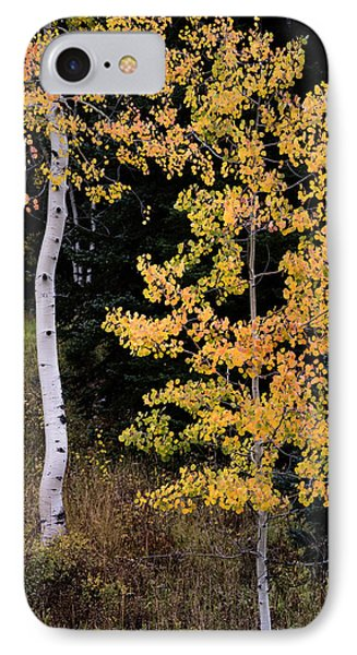 Simple IPhone Case by The Forests Edge Photography - Diane Sandoval