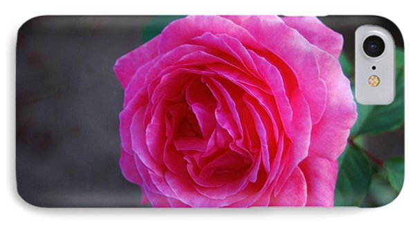 Simply A Rose IPhone Case by Angela J Wright