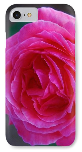 Simply A Rose IPhone Case