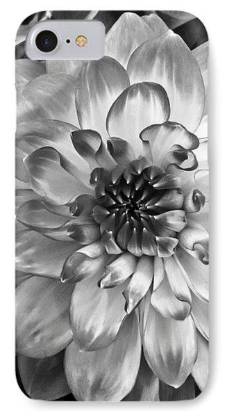 Simply Beautiful IPhone Case by Arlene Carmel