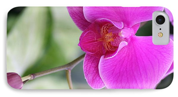 Simply Delicate Pink Orchid IPhone Case by Mary Lou Chmura