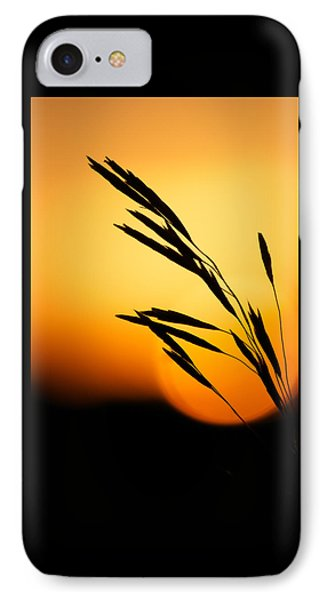 Simply Natural IPhone Case by Penny Meyers