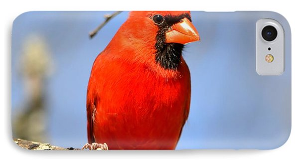 Simply Red IPhone Case by Deena Stoddard