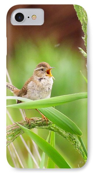 Singing For A Companion IPhone Case by I'ina Van Lawick