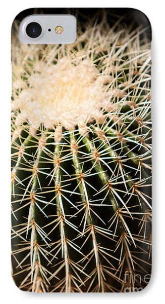 Single Cactus Ball IPhone Case