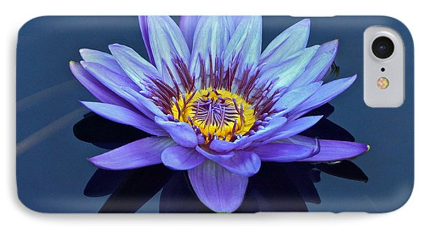 Single Lavender Water Lily IPhone Case