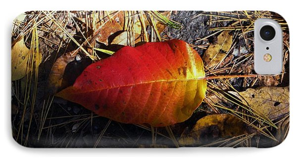Single Leaf IPhone Case by Michael Saunders