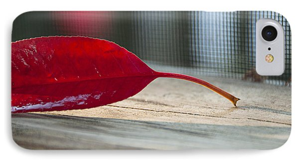 Single Red Leaf Phone Case by Terry Rowe