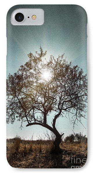 Single Tree IPhone Case by Carlos Caetano