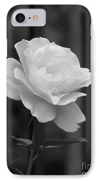 Single White Rose IPhone Case