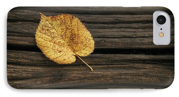 Single Yellow Birch Leaf IPhone Case by Scott Norris