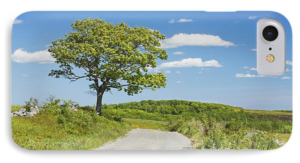 Sinlge Tree And Dirt Road  In Spring Blueberry Field Maine IPhone Case by Keith Webber Jr