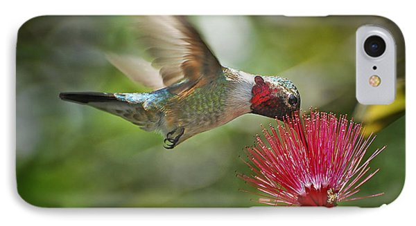 Sipping The Nectar IPhone Case