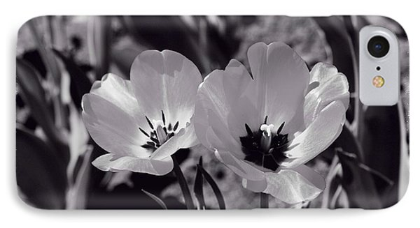 IPhone Case featuring the photograph Sister Tulips by Lynn Hopwood