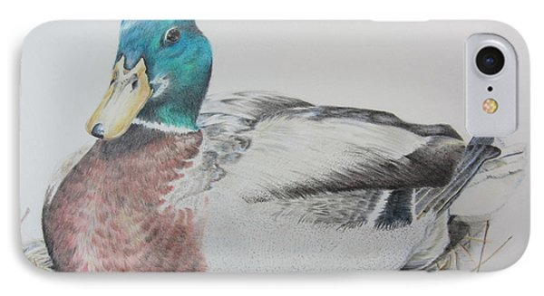 Sitting Duck IPhone Case by Laurianna Taylor