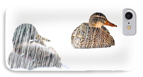 Sitting Ducks In A Blizzard IPhone Case by Bob Orsillo