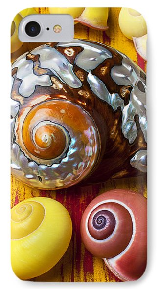 Six Snails Shells Phone Case by Garry Gay
