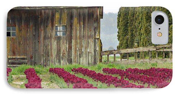 Skagit Valley IPhone Case by Kjirsten Collier