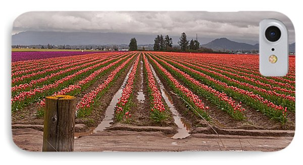 IPhone Case featuring the photograph Skagit Valley Tulip Farmlands In Spring Storm Art Prints by Valerie Garner