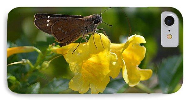 Skipper Butterfly 2 IPhone Case by Debra Martz