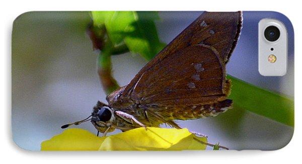 Skipper Butterfly IPhone Case by Debra Martz