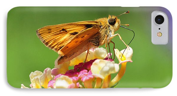 IPhone Case featuring the photograph Skipper On Lantana by Kathy Baccari