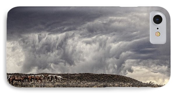 Skirting The Storm IPhone Case by Joan Davis