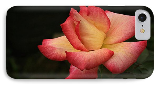 IPhone Case featuring the photograph Skc 0432 Blooming And Blossoming by Sunil Kapadia