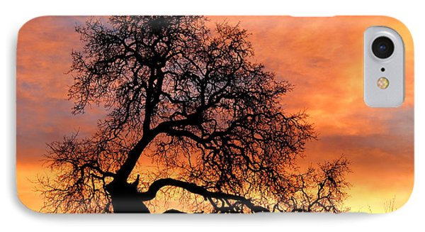 Sky On Fire IPhone Case by Priya Ghose