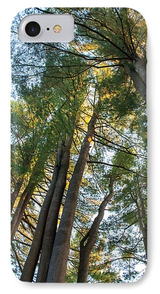 IPhone Case featuring the photograph Skyward Trees by Dawn Romine