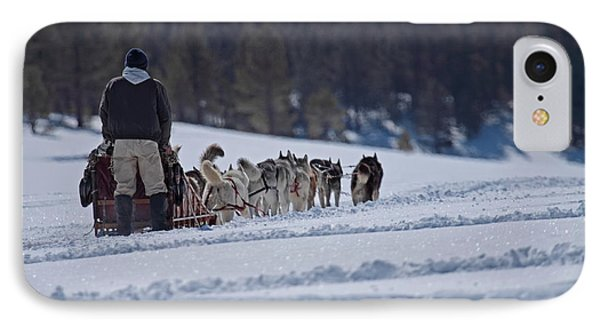 IPhone Case featuring the photograph Sled Dog  by Duncan Selby