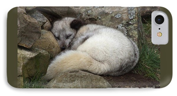 Sleeping Arctic Fox IPhone Case