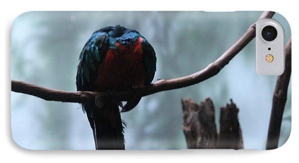 Sleeping Blue Bird IPhone Case