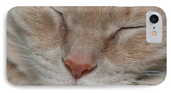 Sleeping Cat Face Closeup Phone Case by Amy Cicconi