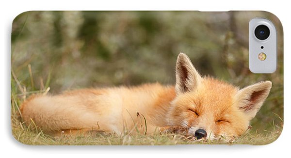 Sleeping Cuty _ Red Fox Kit IPhone Case