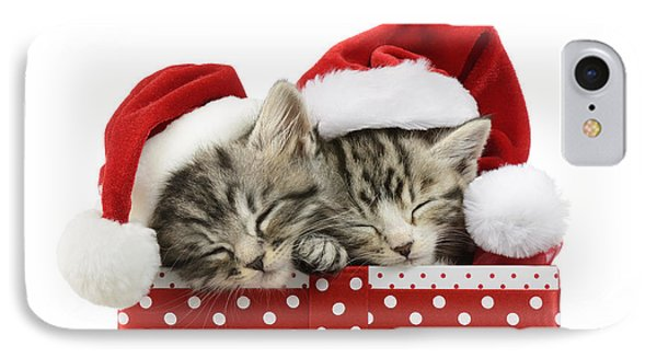 Sleeping Kittens In Presents IPhone Case