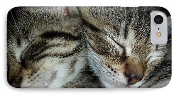 Sleeping Kittens IPhone Case