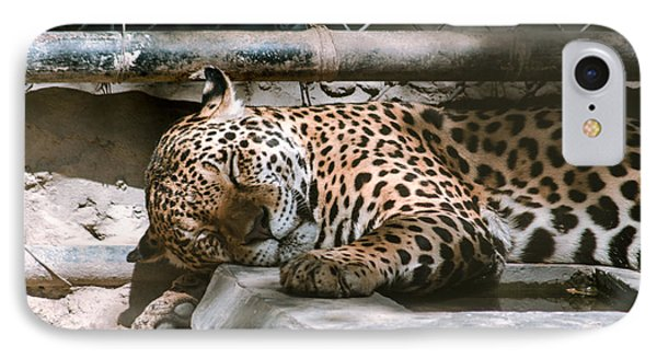 Sleeping Leopard Phone Case by Gautam Gupta