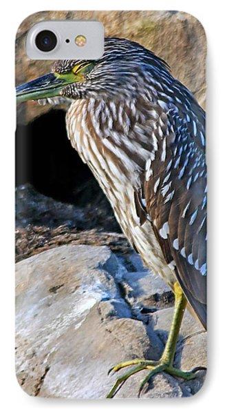 Sleeping Night Heron IPhone Case