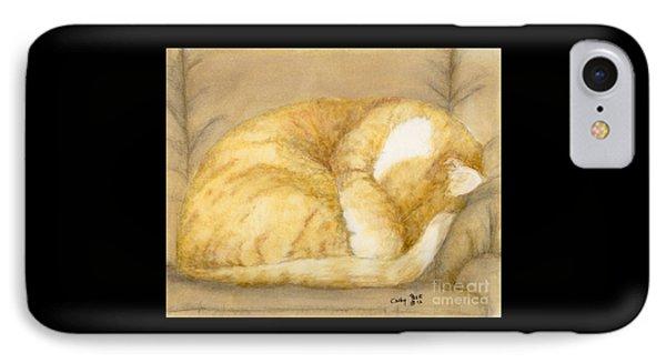 Sleeping Orange Tabby Cat Feline Animal Art Pets IPhone Case